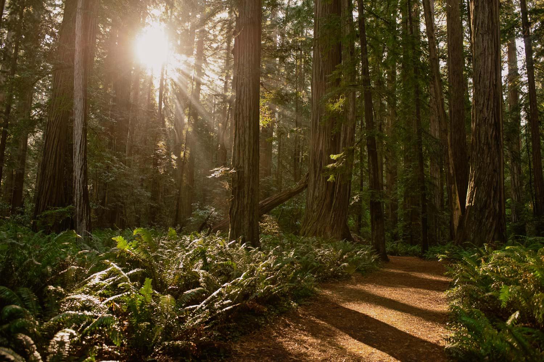 Oregon Travel Photographer